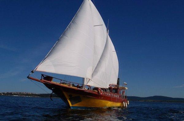 Яхта под наем Трофи